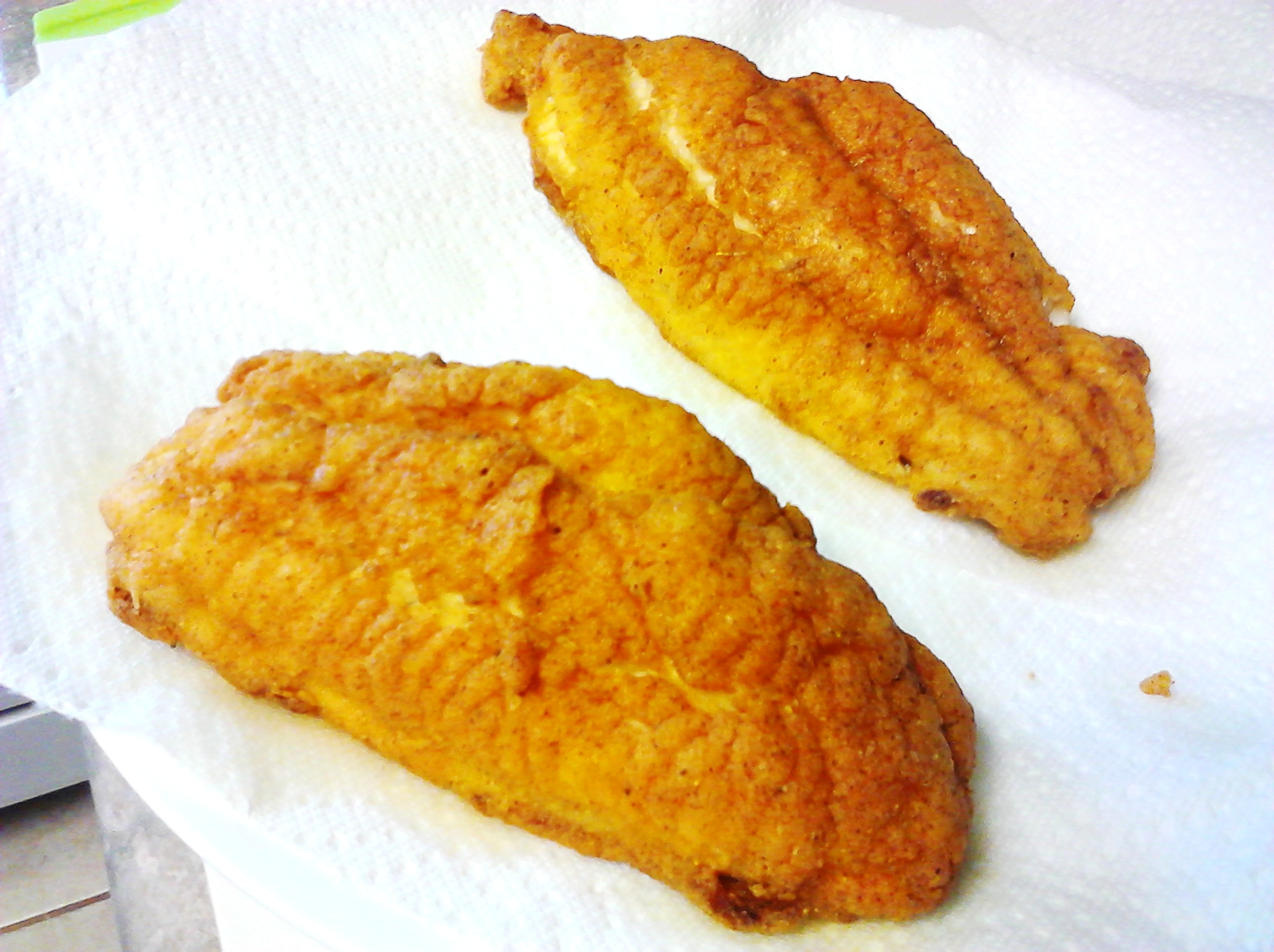 Frying fish from a box poor man 39 s gourmet kitchen for What goes good with fried fish