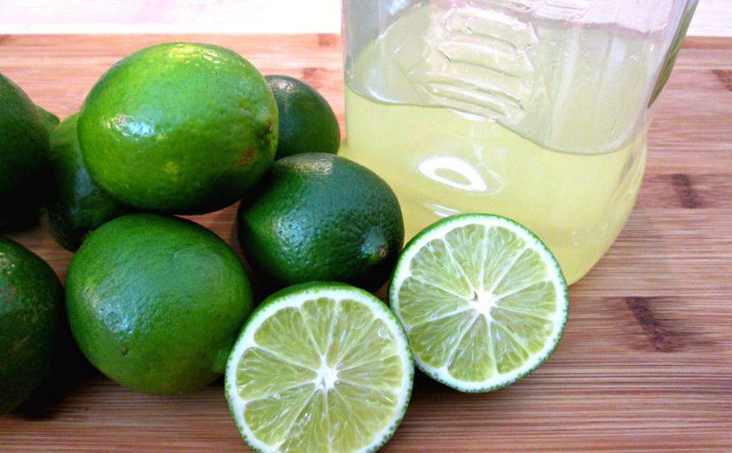 Lime Margarita Mixer Recipe
