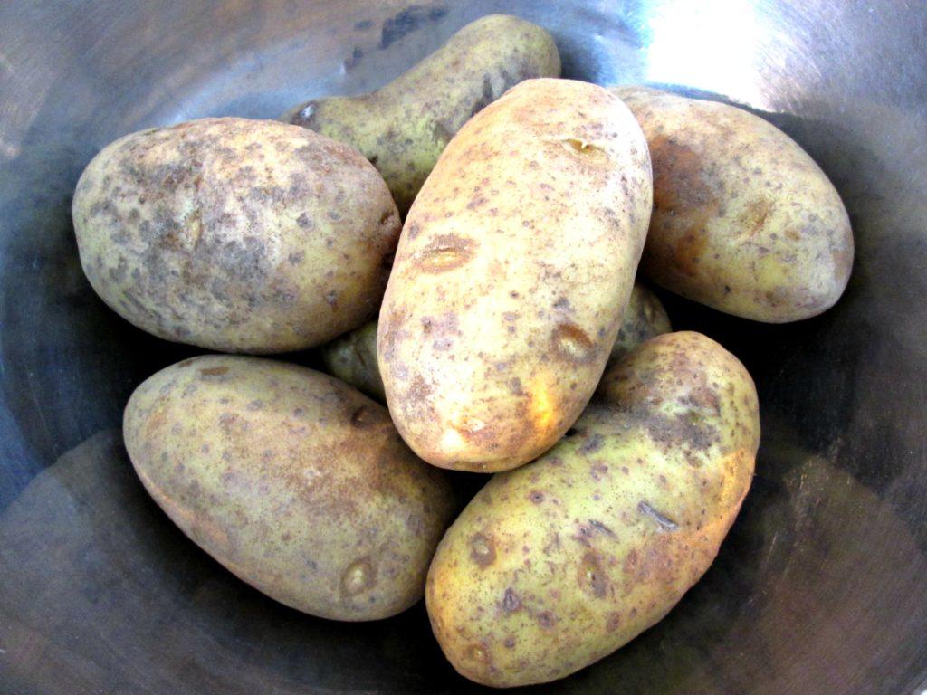 Potato Bomb Mini's